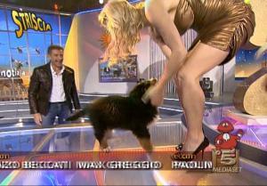 Michelle Hunziker dans Striscia La Notizia - 11/01/08 - 1