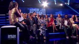 Estelle Denis dans Ce Soir On Chante France Gall - 01/06/13 - 029