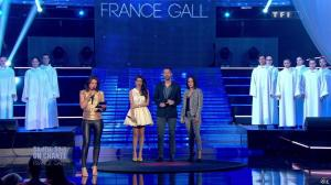 Estelle Denis dans Ce Soir On Chante France Gall - 01/06/13 - 082