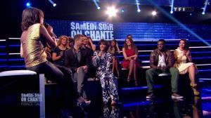 Estelle Denis dans Ce Soir On Chante France Gall - 01/06/13 - 122