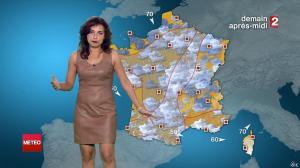 Anaïs Baydemir à la Météo de 20h - 27/07/14 - 11