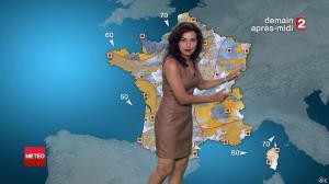 Anaïs Baydemir à la Météo de 20h - 27/07/14 - 28