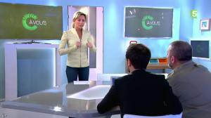 Anne-Sophie Lapix dans C à Vous - 25/02/14 - 03