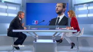 Caroline Roux dans C Politique - 01/06/14 - 05