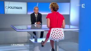 Caroline Roux dans C Politique - 08/06/14 - 03