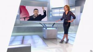 Caroline Roux dans C Politique - 13/04/14 - 05