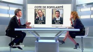 Caroline Roux dans C Politique - 13/04/14 - 16