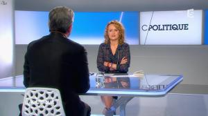 Caroline Roux dans C Politique - 13/04/14 - 17