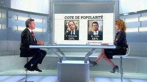 Caroline Roux dans C Politique - 13/04/14 - 18