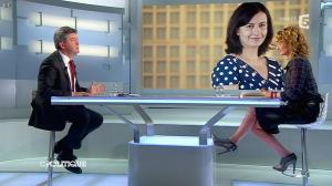 Caroline Roux dans C Politique - 13/04/14 - 29
