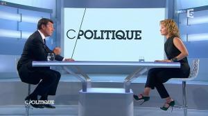 Caroline Roux dans C Politique - 15/06/14 - 03