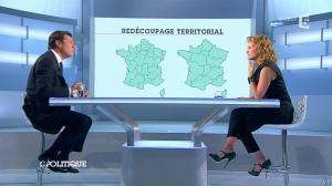 Caroline Roux dans C Politique - 15/06/14 - 06