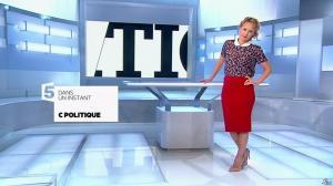 Caroline Roux dans C Politique - 22/06/14 - 02