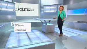Caroline Roux dans C Politique - 26/01/14 - 01