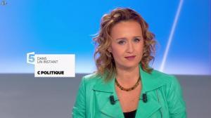 Caroline Roux dans C Politique - 26/01/14 - 02