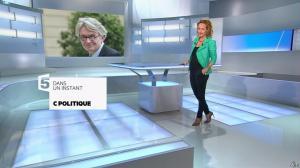 Caroline Roux dans C Politique - 26/01/14 - 03