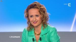 Caroline Roux dans C Politique - 26/01/14 - 08