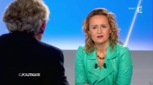 Caroline Roux dans C Politique - 26/01/14 - 09