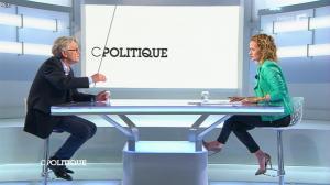 Caroline Roux dans C Politique - 26/01/14 - 13