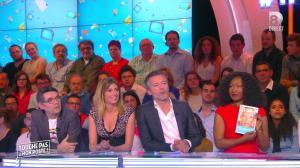 Caroline Ithurbide dans Touche pas à mon Poste - 15/04/16 - 04