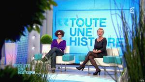 Sophie Davant dans Toute une Histoire - 22/04/13 - 02
