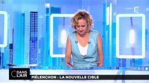 Caroline Roux dans C dans l'Air - 12/04/17 - 50