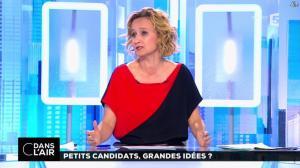 Caroline Roux dans C dans l'Air - 19/04/17 - 02