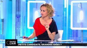Caroline Roux dans C dans l'Air - 19/04/17 - 04