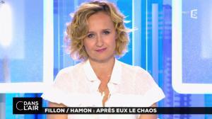 Caroline Roux dans C dans l'Air - 25/04/17 - 07