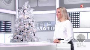 Charlotte Bouteloup dans Télématin - 02/01/17 - 01