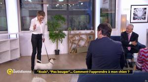 Laetitia Barlerin dans la Quotidienne - 29/11/17 - 02