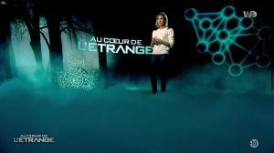 Stéphanie Renouvin dans Au Coeur de l'Etrange - 24/04/18 - 02