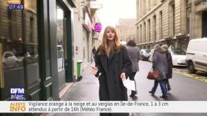 Valérie Amarou dans BFM Tendances - 15/01/17 - 02