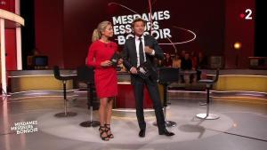 Anne-Sophie Lapix dans Mesdames Messieurs Bonsoir - 13/06/19 - 02