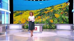 Marie Sophie Lacarrau au 13h - 26/03/19 - 06