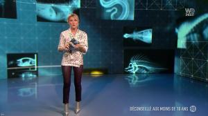 Stéphanie Renouvin dans Veto de Choc - 29/01/19 - 02