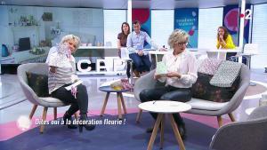 Sylvie Adigard dans c'est au Programme - 10/05/19 - 03