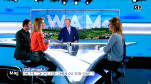 Sandrine Arcizet dans William à Midi - 27/01/20 - 08