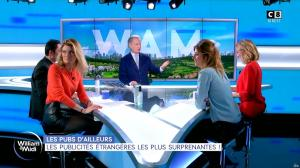 Sandrine Arcizet dans William à Midi - 27/01/20 - 10