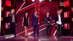 Jenifer Bartoli dans The Voice - 20/04/13 - 05