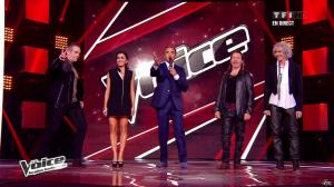 Jenifer Bartoli dans The Voice - 20/04/13 - 06
