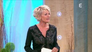 Sophie Davant dans Toute une Histoire - 14/06/11 - 01