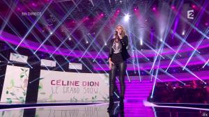 Céline Dion dans le Grand Show - 24/11/12 - 09