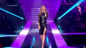 Céline Dion dans le Grand Show - 24/11/12 - 100