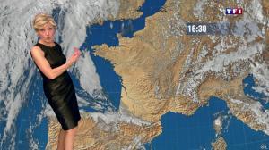 Evelyne Dhéliat à la Météo de 20h - 05/03/14 - 01