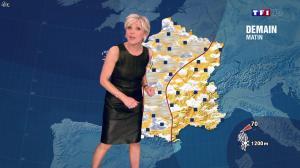 Evelyne Dhéliat à la Météo de 20h - 26/03/14 - 02