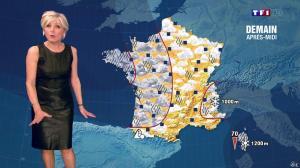 Evelyne Dhéliat à la Météo de 20h - 26/03/14 - 06