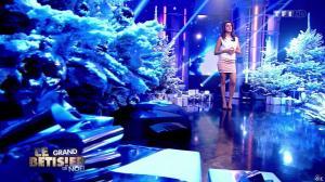 Karine Ferri dans le Grand Betisier de Noel - 24/12/13 - 13