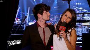 Karine Ferri dans The Voice - 01/02/14 - 23