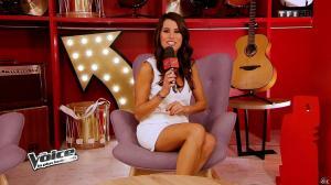 Karine Ferri dans The Voice - 08/02/14 - 12